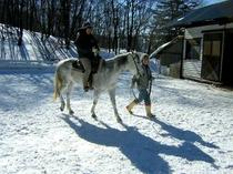冬景色の中、引き馬体験♪
