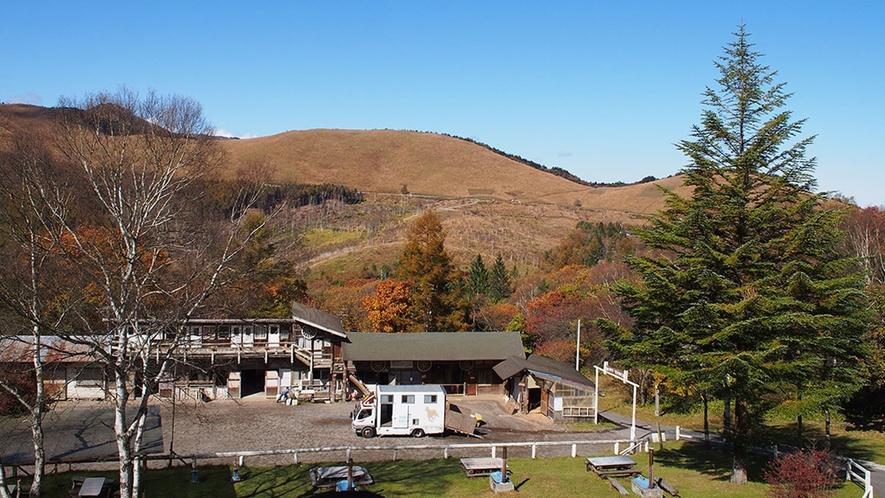 ・【ホワイトホース】窓から車山の絶景が見渡せるお部屋