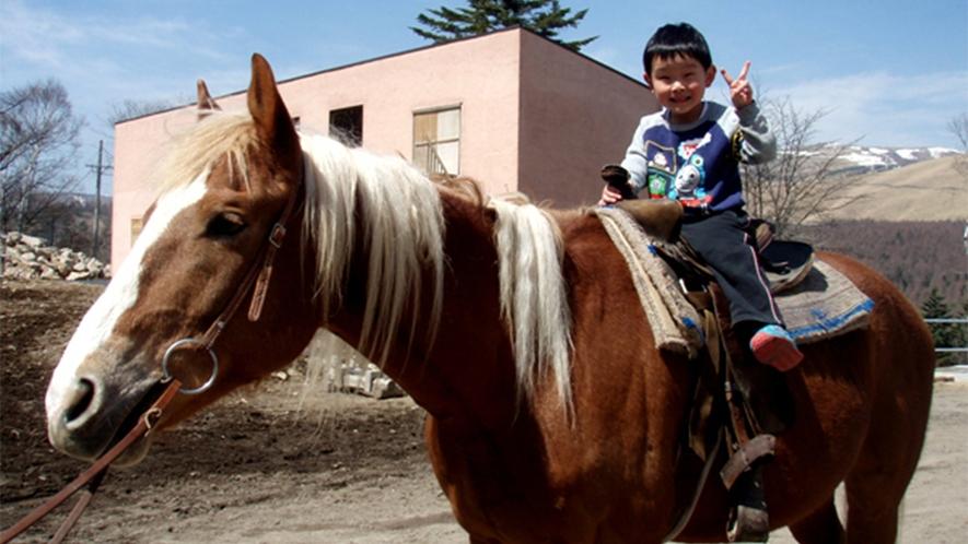 ・お子様や初心者の方も楽しく乗馬体験!