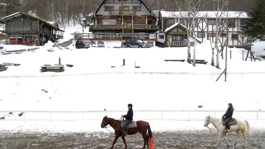 ・馬は寒い冬でも元気!四季を感じながら1年を通して乗馬体験ができます