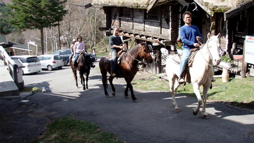・お子様や初心者の方も楽しく乗馬体験ができます