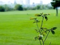 ◆周辺には有名なゴルフコースが多数!◆