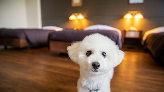 【愛犬・基本の料金】わんちゃんと一緒に宿泊できるプランです