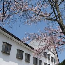 【外観】やや遅めの桜が楽しめる春