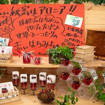 ホロホロ山荘でも勤務する石川さんの作るハチミツ。赤色の秘密は大滝名産のアレ。この地域でしか手に入らな