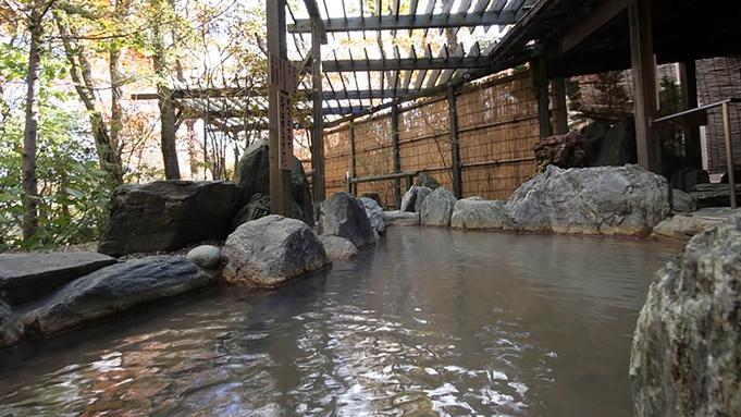 <那須ハイランドパーク【ファンタジーパス】付>北関東最大級の遊園地<「森のテーブル」和洋バイキング>