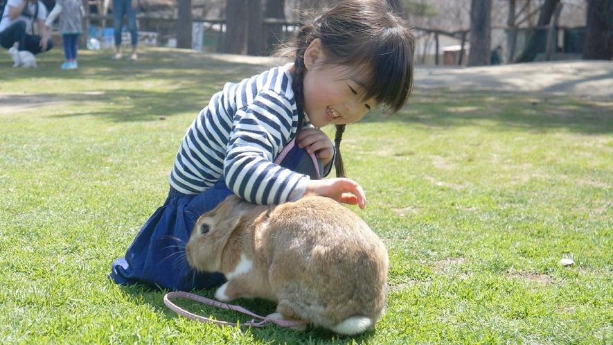 ◇【那須高原 南ヶ丘牧場/当館より車で約5分】那須高原の広大な自然で動物とふれあう。
