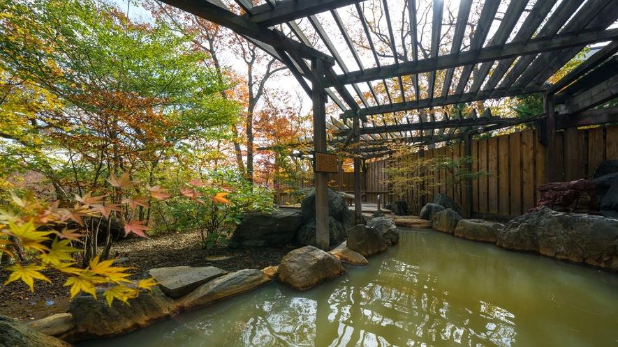 ◇フォレストヴィラ館<森の湯>硫黄泉と弱アルカリ泉2種類の泉質を楽しめる露天風呂