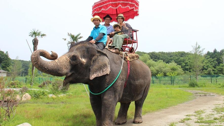 ◇【那須ワールドモンキーパーク/当館より車で約20分】世界の動物が大集合!