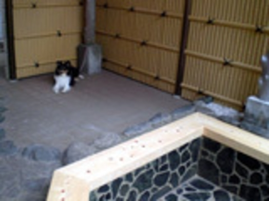 ☆[当日OK]ペットと一緒に素泊まり♪天然温泉露天風呂も無料で貸切![禁煙]