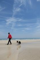 白浜海岸でお散歩