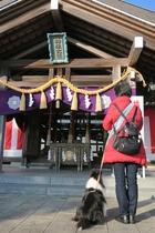 伊豆高原の神社で初詣