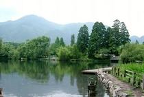 金鱗湖AA