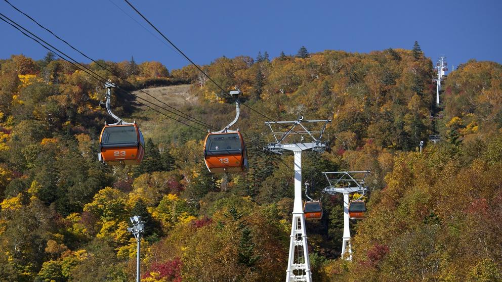 【秋】札幌国際スキー場の紅葉ゴンドラ 期間限定の絶景をご覧いただけます