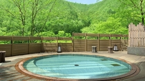 露天風呂(婦人用) 新緑 ※本館が休館の場合はご利用いただけません。ご了承ください。