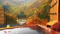 秋~露天風呂付客室(和室)からの景観