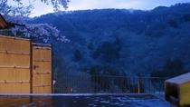 露天風呂付客室(和室) 薄暮の桜 ※101号室のみ
