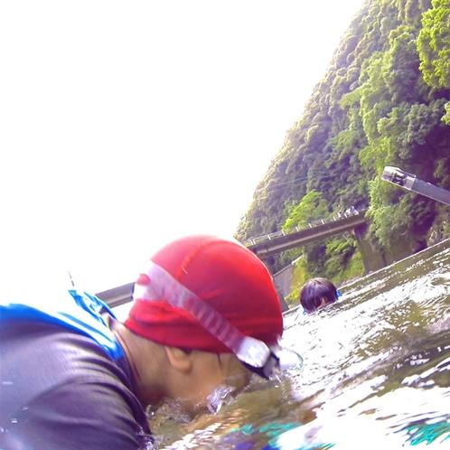 【川遊び】水中にいる魚を観察