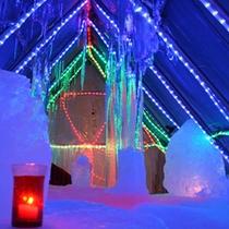 【冬季】タルマかねこおり特別期間に開催の「氷のバー」