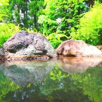 【温泉】露天(女湯)湯に映る新緑。なんともいえない豊かな気持ちになります。