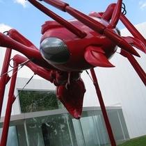 十和田市美術館