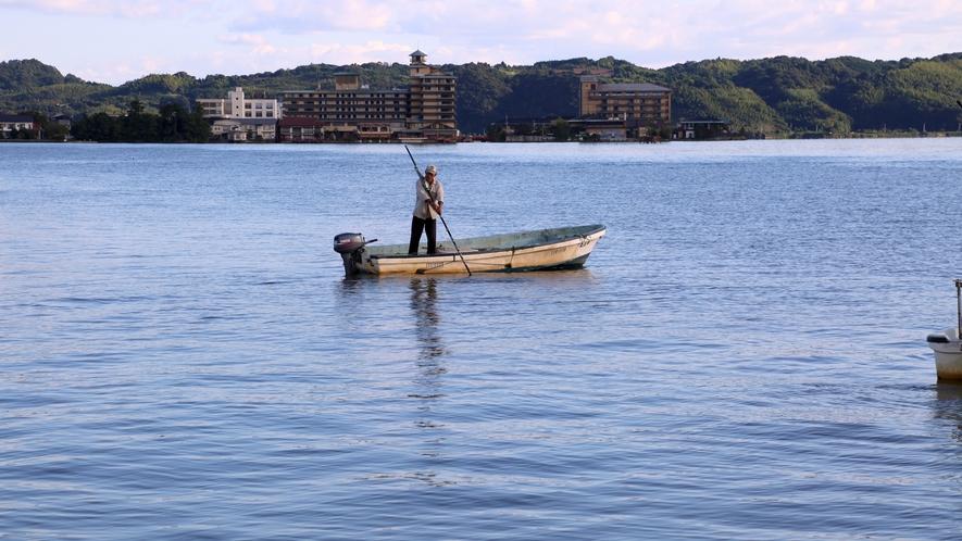 *【早朝・東郷湖のしじみ取り】早起きをしてお庭を散策すると東郷湖ではしじみ漁が始まっております。