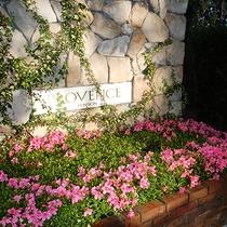 *[お庭]花と緑に囲まれた伊豆高原のプロヴァンス。ご家族の素敵な思い出を。