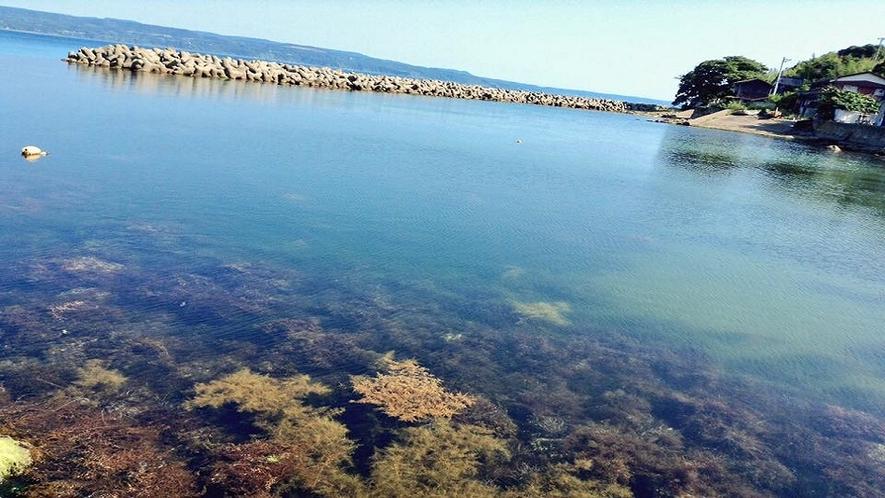 七浦海岸 二見漁港
