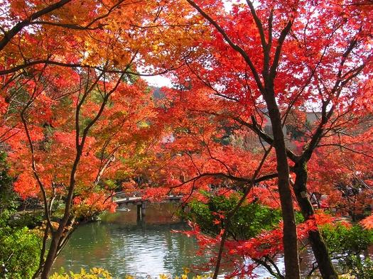 ◆◇秋旅☆紅葉が彩る京都を満喫♪素泊まりプラン◇◆