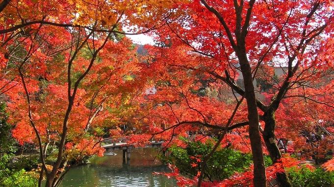 ◆◇秋旅☆紅葉が彩る京都を満喫♪朝食付きプラン◇◆