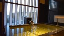 「銀泉」内風呂付きデラックス和洋室203