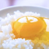 """【1日30個限定!石黒たまご】""""栄養価抜群!""""プルップルの白身はお茶碗からこぼれないんです!"""