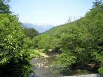 [烏川渓谷]美しい清流の流れる渓谷の風景