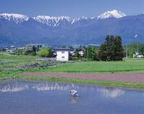 [春の安曇野]雪化粧の残るアルプスの山並みと安曇野の田園風景