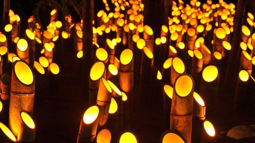 *[穂高神社の神あかり]竹の灯篭に幻想的なあかりが灯る夜