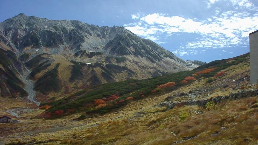 *≪立山・室堂平≫9月下旬~10月上旬が紅葉の見頃です。