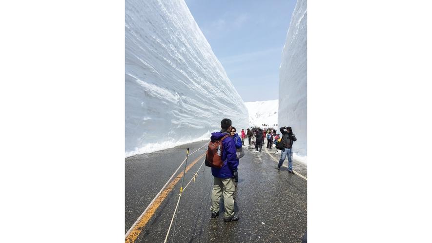 *黑部雪の大谷/大迫力の雪壁を間近で体験♪見て触れて、春から初夏限定のイベントです☆