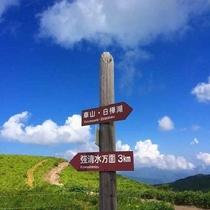 日本百名山 霧ケ峰周辺のハイキングは初心者でも安心