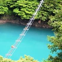 『黒部峡谷 サルの橋』