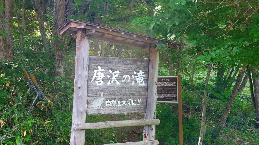 *唐沢の滝/当館より車で約10分にあるおすすめスポット
