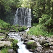 *唐沢の滝/清々しい水の流れに癒されます