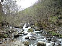 近くの渓谷
