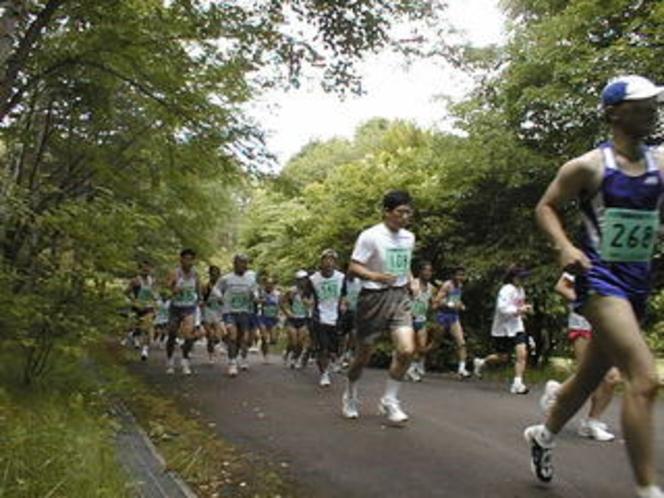 森林浴マラソン