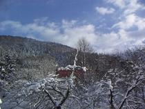 平和観音の山の冬
