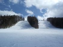 魔法の粉雪 戸隠スキー場