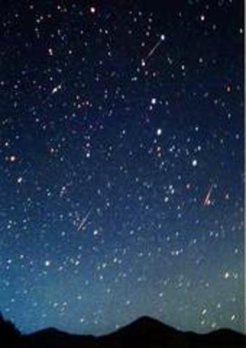 流れ星を八ヶ岳の大草原で肉眼でみませんか(ジョナサンから700mの森の中)