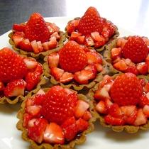 【食事/デザート一例】イチゴをふんだんに使用した手作り「エルトベアトルテ」。