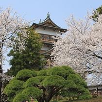 【周辺】高島城周辺は桜の名所ともなっており、毎年多くの人で賑わいます。