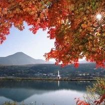 ○観光 白樺湖紅葉