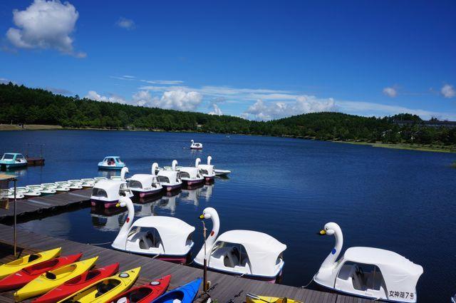 女神湖ではボート・白鳥・カヤックも楽しめます